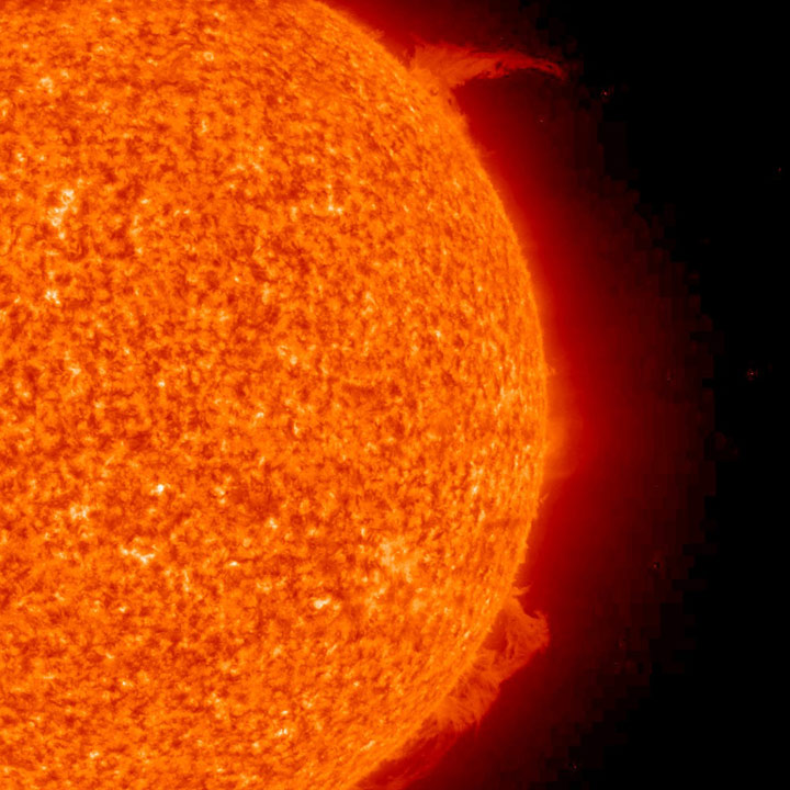 Solar prominences on the Sun. Image credit: NASA