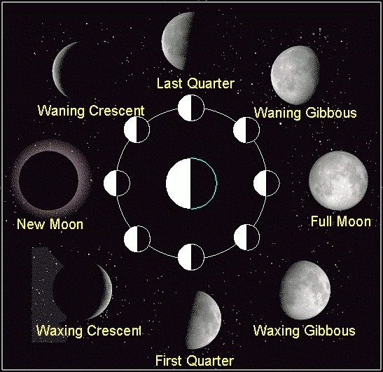 Raising little geniuses phases of the moon chalkboard lesson for Fishing moon phase