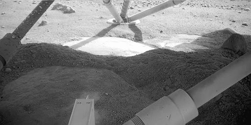 Sol 8 image from under the lander.  Credit:  NASA/JPL/C