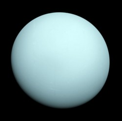 Uranus, captured by Voyager 2. Image credit: NASA/JPL