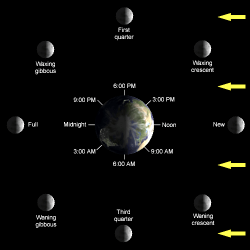 Diagram of Moon Phases