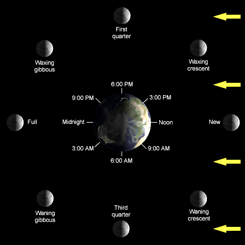 Schedule of Moon Phases. Times shown indicate when the moon is overhead.