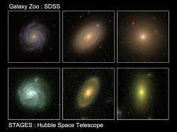 Images of three galaxies from the Galaxy Zoo (top) and STAGES surveys (bottom) show examples of how the newly discovered population of red spi