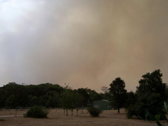 Australian Fires - Bert Candusio
