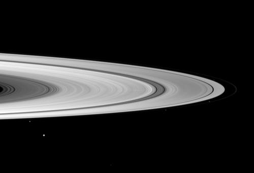 Nine of Saturn's moons are in this image.  Can you find them? Credit: NASA/JPL/Space Science Institute