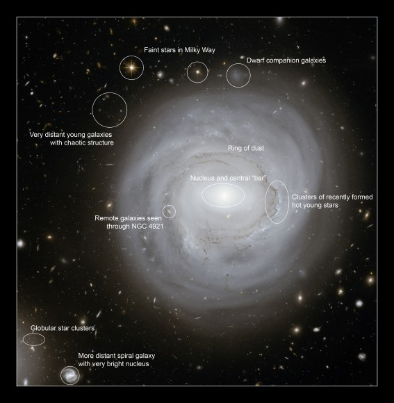 Annotated deep Hubble Space Telescope image of NGC 4921 indictating the locations of some of the more interesting features of the galaxy and its surroundings.   Credits: NASA, ESA and K. Cook (Lawrence Livermore National Laboratory, USA)