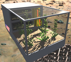 A prototype space greenhouse.  Credit: Paragon Space Development Corp.