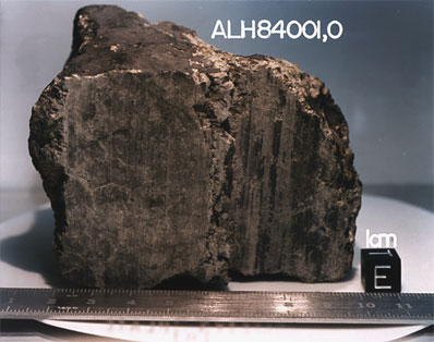 Alan Hills Meteorite.  Credit: NASA