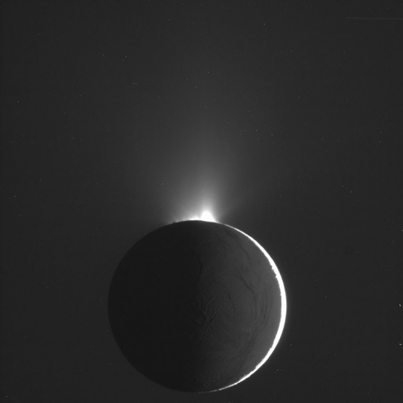 The plumes of Enceladus as imaged by the most recent Cassini flyby. Do Enceladus and Jupiter's moon Europa have life in their oceans? Image Credit: NASA/JPL/Space Science Institute