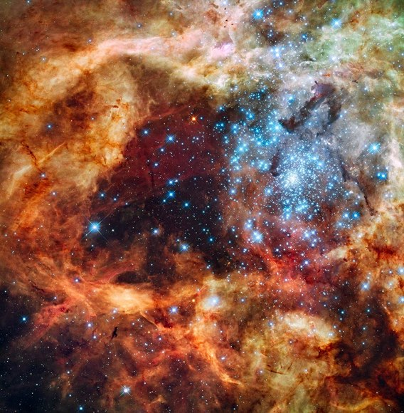 Hubble image of star-forming region R136 in the 30 Doradus Nebula.  Credit: NASA, ESA, and F. Paresce (INAF-IASF, Bologna, Italy), R. O'Connell