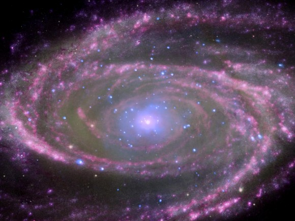 Black Holes Have Simple Feeding Habits
