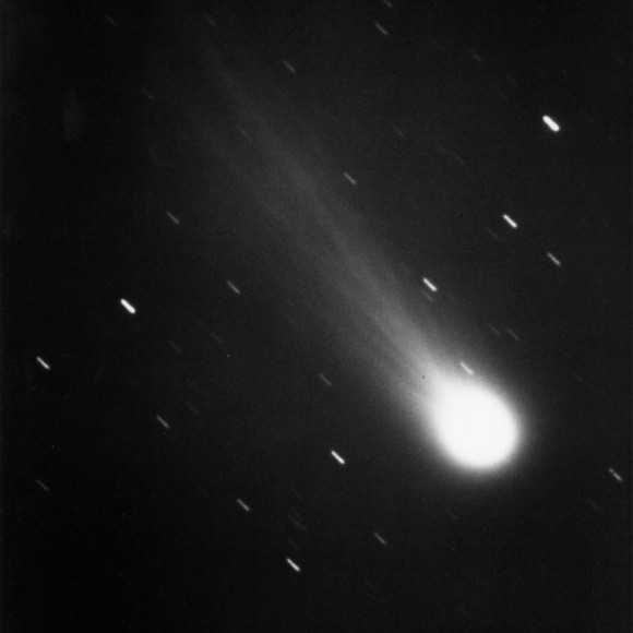 The Comet Halley