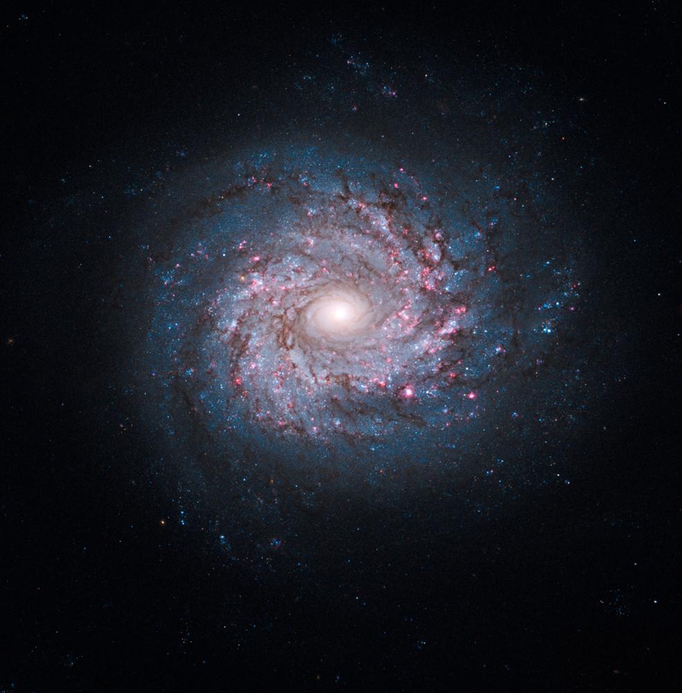 宇宙の画像 p1_27