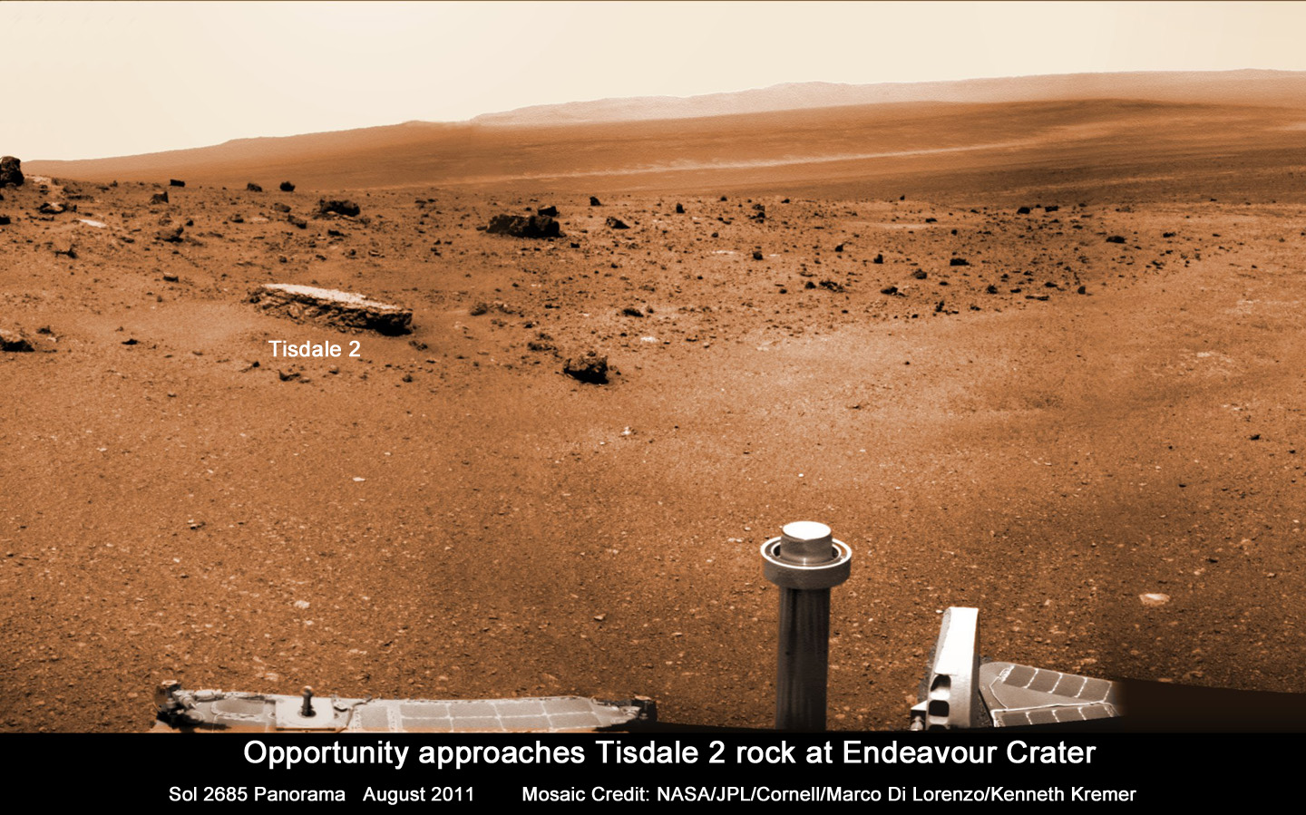 Free life on mars Essays and Papers  123helpmecom