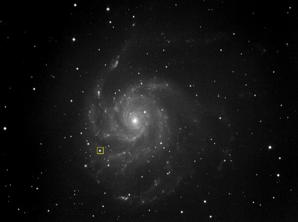 Astrophoto: M101 Supernova by Bill Schlosser
