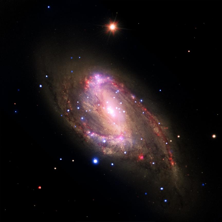 black hole creature - photo #38