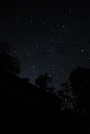 A vanishing treasure; true dark skies. (Photo by Author).