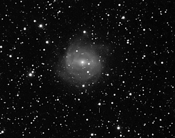 New supernova 2013aa, discovered by Stu Parker on February 13, 2013, is southwest of the spiral galaxy NGC 5643 in the southern constellation Lupus. This photo was taken three days later. Credit: Joseph Brimacombe