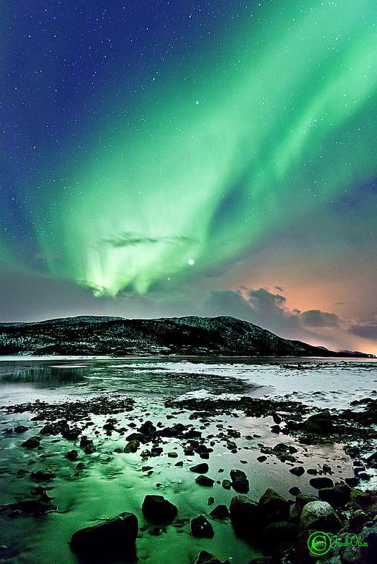 Šiaurės pašvaistė Niose, Nordlande, Norvegijoje. ©Frank Olsen