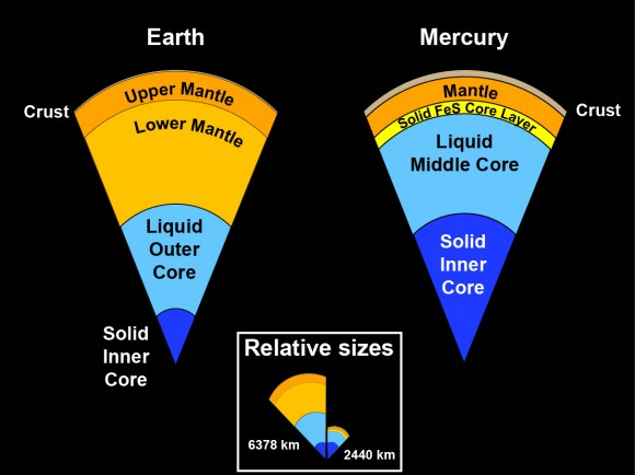 The internal structure of Mercury is very different from that of the Earth. The core is a much larger part of the whole planet in Mercury and it also has a solid iron-sulfur cover. As a result, the mantle and crust on Mercury are much thinner than on the Earth.  Credit: Case Western Reserve University