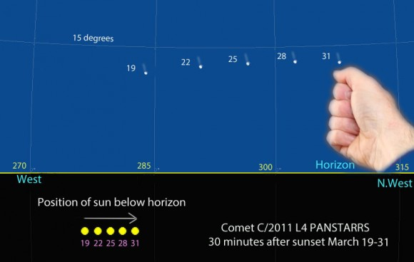 Use this map to find Comet PANSTARRS now through March 31. It depicts the sky facing west-northwest 30 minutes after sunset. The comet's height remains fairly steady at about 10-14 degrees but it moves steadily northward (to the right). The yellow circles represent the sun's position every 3 days. It also moves northward but more slowly. One fist equals about 10 degrees of sky. Created with Chris Marriott's SkyMap software