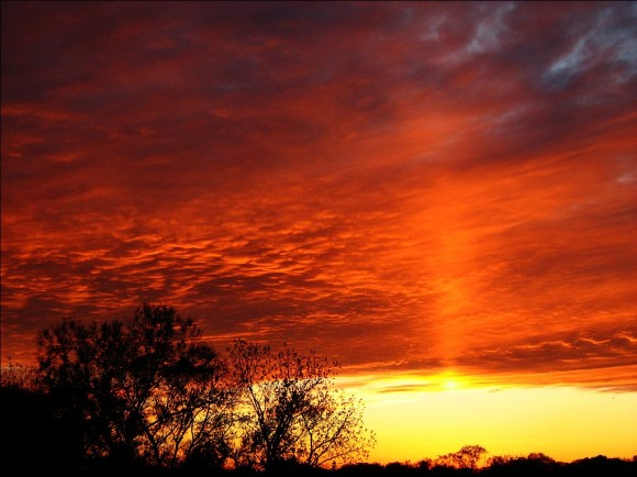 Recent Sun Pillar seen near Toronto, Canada. Credit and copyright: Rick Ellis.