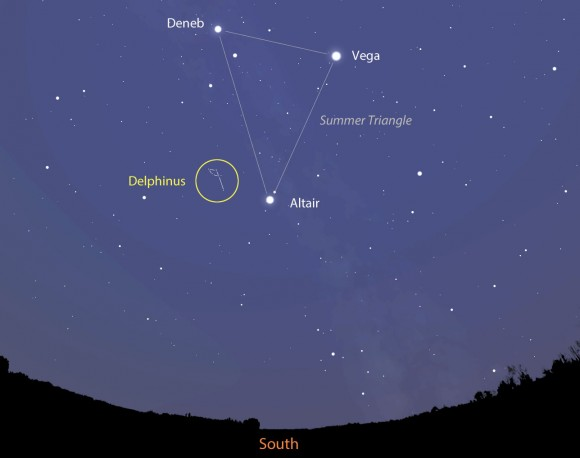 The rare and rarely heard of meteor shower called the Gamma Delphinids will appear to radiate from the constellation Delphinus (del-FINE-us) the Dolphin high in the southern sky shortly before dawn tomorrow morning June 11. This map shows the sky facing south at 3:30 a.m. local time. Delphinus is near the bottom of the bright 3-star figure the Summer Triangle. Stellarium