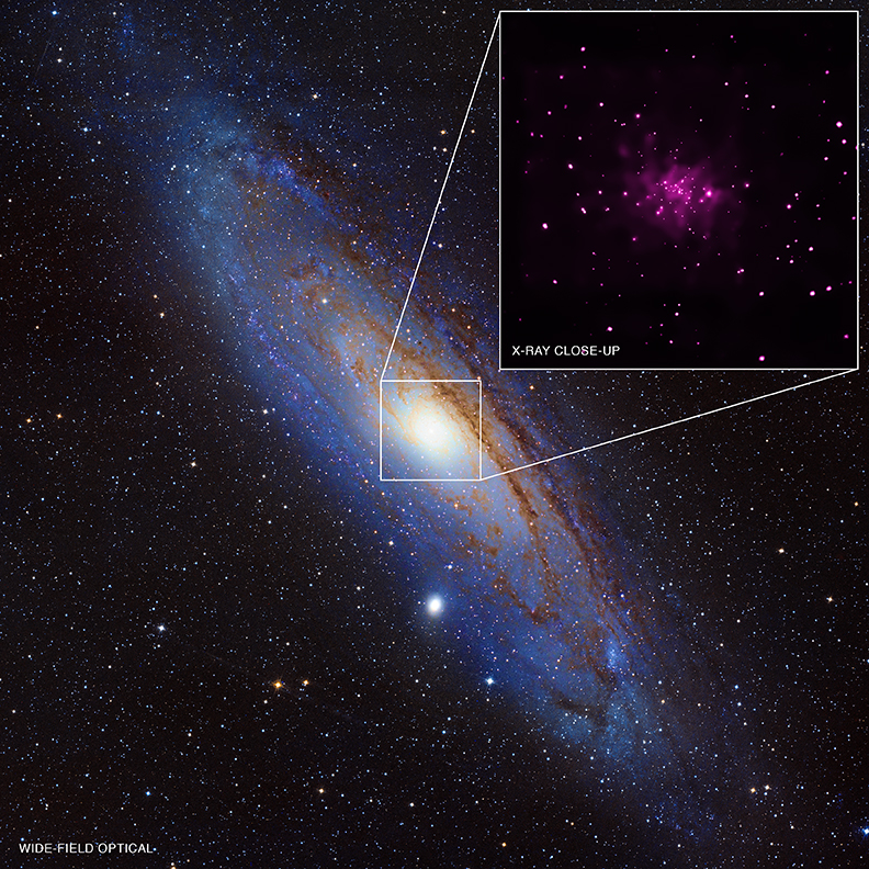 Black Hole Bonanza! Dozens (Potentially) Found In Andromeda As Another Study Probes X-Rays