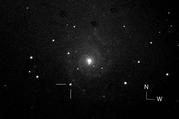 "One of the first photos of the possible new supernova in the nearby galaxy M74 taken by the Italian Supernova Search Project. The object is located 93"" east and 135"" south of the galaxy's center. Click to learn more about the search group. Credit: Fabio Martinelli"