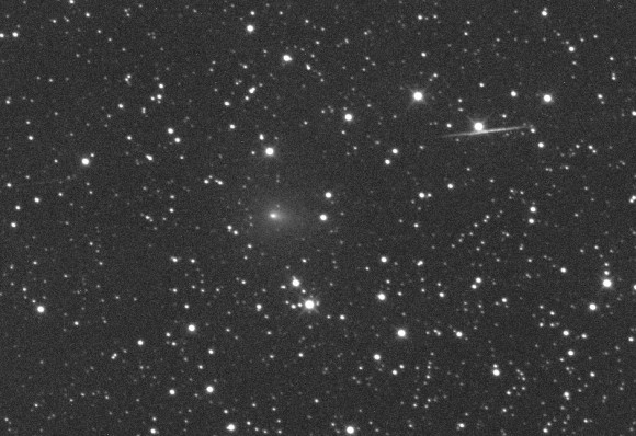 Comet C/2013 R1 Lovejoy photographed on Sept. 10. The comet is visible in larger amateur telescopes in September but may brighten to small scope visibility in November. Credit: Michael Jaeger
