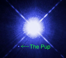 "Sirius is orbited by an Earth-sized, superdense white dwarf nicknamed the ""Pup"". Credit: NASA/ESA"