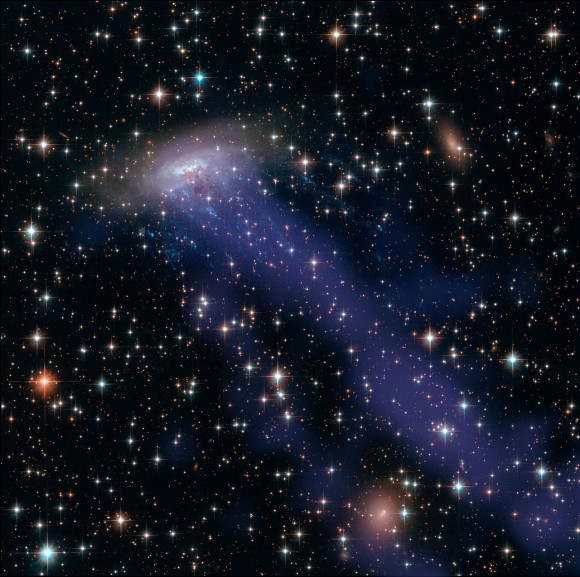 A gas stream from galaxy ESO 137-001 shines brightly in X-rays captured by the Chandra X-Ray Observatory. The galaxy is captured in other wavelengths by the Hubble Space Telescope. The gas stream is due to the galaxy running into superheated gas in the region. Credit: NASA, ESA, CXC