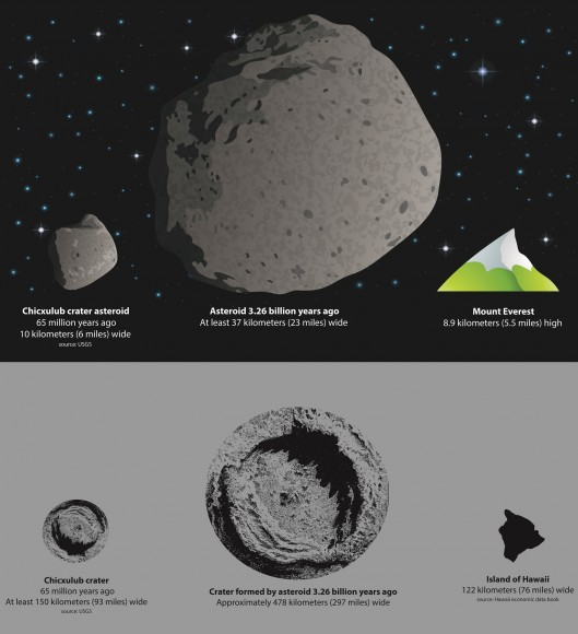 A graphic comparing the asteroid that killed the dinosaurs, with an asteroid newly believed to have struck the Earth 3.26 billion years ago. Below the asteroids is a graphic showing how big the craters would have been. Credit: American Geophysical Union