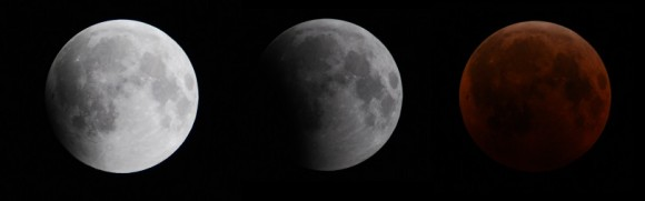 Webcasts and Forecasts for Tonight's Total Lunar Eclipse