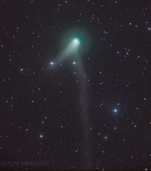 Comet C/2012