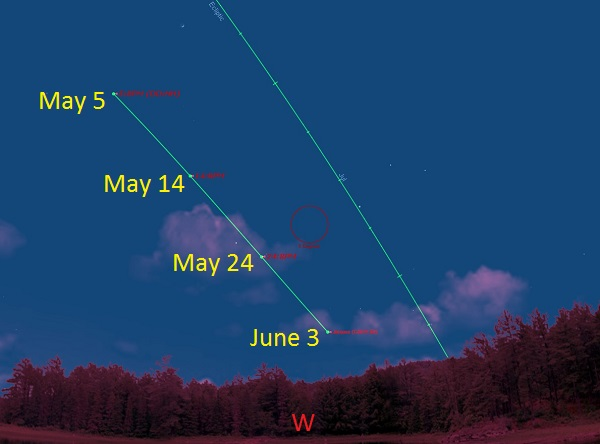 Comet Jacques Brightens How To See It In May