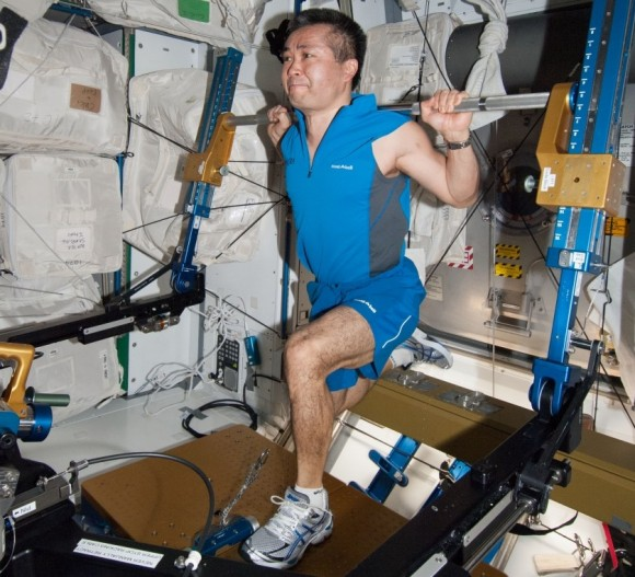 Expedition 38/39 astronaut Koichi Wakata (Japanese Aerospace Exploration Agency) uses the advanced Resisti