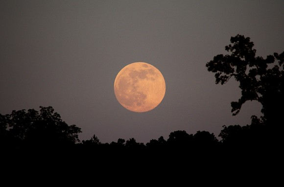 "The June 2012 ""Honey Moon"" rising. Photo credit: Stephen Rahn."