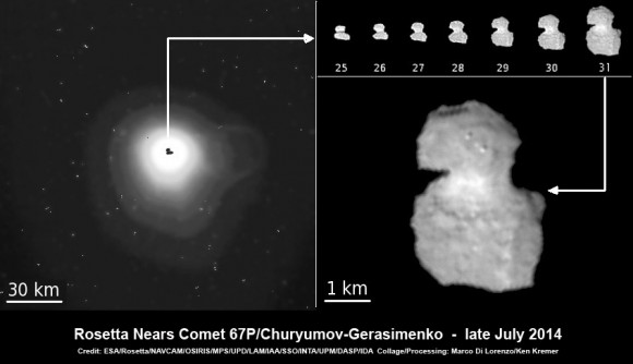 ESA's Rosetta Spacecraft nears final approach to Comet 67P/Churyumov-Gerasimenko in late July 2014. This collage of imagery from Rosetta combines Navcam camera images at right taken nearing final approach from July 25 (3000 km distant) to July 31, 2014 (1327 km distant), with OSIRIS wide angle camera image at left of comet's expanding coma cloud on July 25. Images to scale and contrast enhanced to show further detail. Credit: ESA/Rosetta/NAVCAM/OSIRIS/MPS/UPD/LAM/IAA/SSO/INTA/UPM/DASP/IDA   Collage/Processing: Marco Di Lorenzo/Ken Kremer