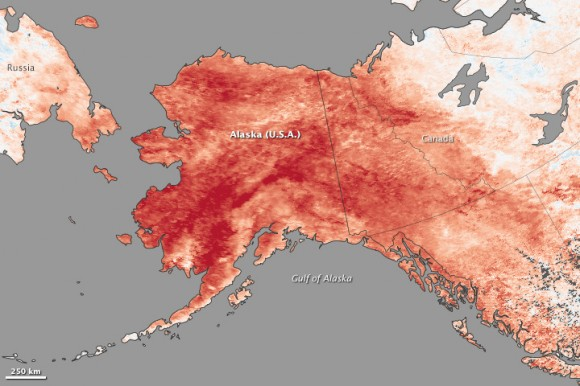 In 2013, a blocking pattern over Alaska caused a record-breaking heat wave. Credit: Photo by Jesse Allen and Jeff Schmatltz, using data from theLand Processes Distributed Active Archive Center(LPDAAC) and theLANCE/EOSDIS Rapid Response