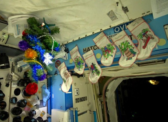 """""""AstroButch [Butch Wilmore] has set up our Xmas tree in the lab and hung socks for us,"""" tweeted astronaut Samantha Cristoforetti from the International Space Station Dec. 7, 2014. Credit: Samantha Cristoforetti/Twitter"""