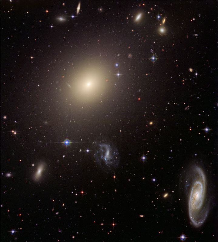 Distant Cluster of Galaxies Viewed by Hubble