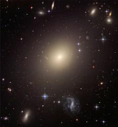 Elliptical galaxy ESO 325-G004. ESO