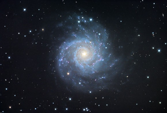 M74 is a classic spiral galaxy with arms that appear to unwind from a bright, star-packed nucleus. Located 32 million light years away in the constellation Pisces, M74 contains about 100 billion stars. The spiral arms are dotted with dense star clusters and pink clouds of fluorescing hydrogen gas. Credit: Jim Misti