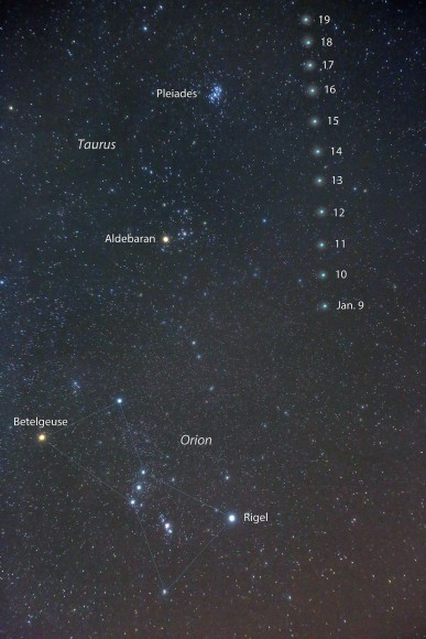 This photo map shows Comet Lovejoy's  nightly position among the winter stars through January 19th as it travels across the constellation Taurus not far from Aldebaran and the Pleiades star cluster. Click to enlarge. Credit: Bob King